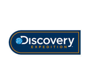 Discovery集团