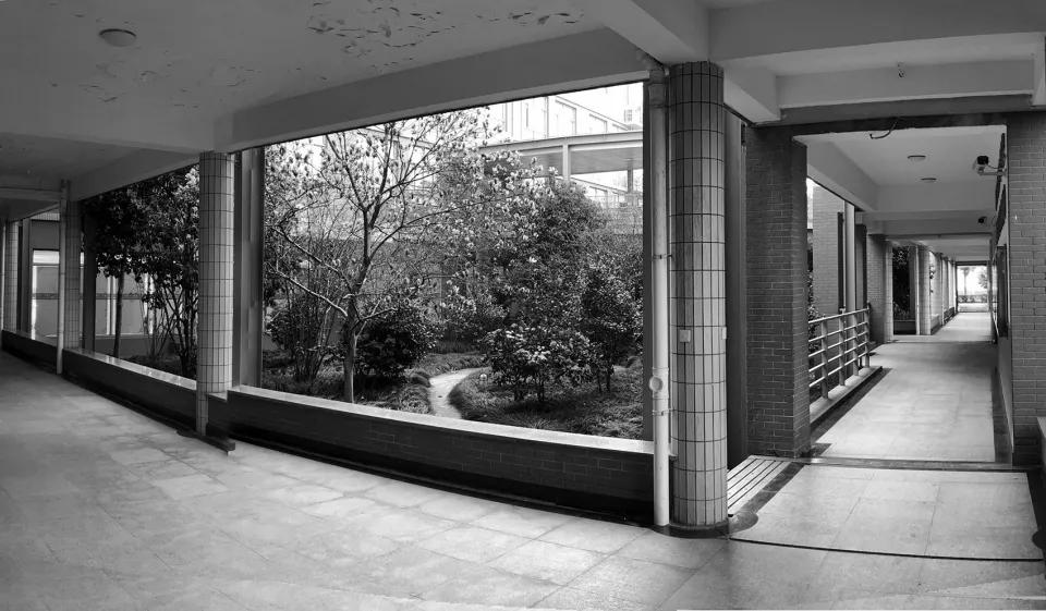最受欢迎的非正式学习空间 - 树桌花园2.webp.jpg
