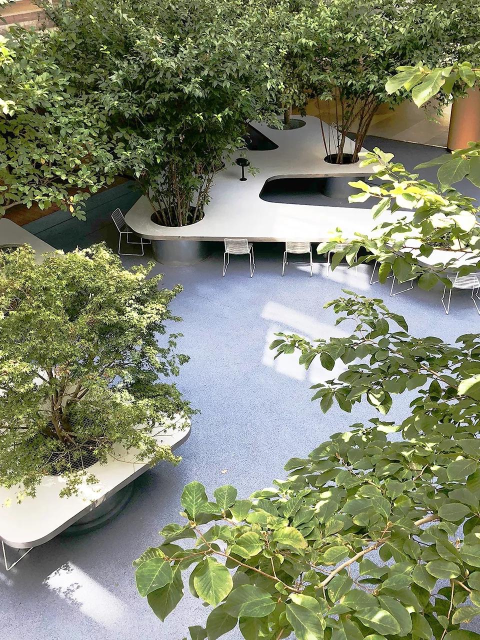 最受欢迎的非正式学习空间 - 树桌花园6.webp.jpg