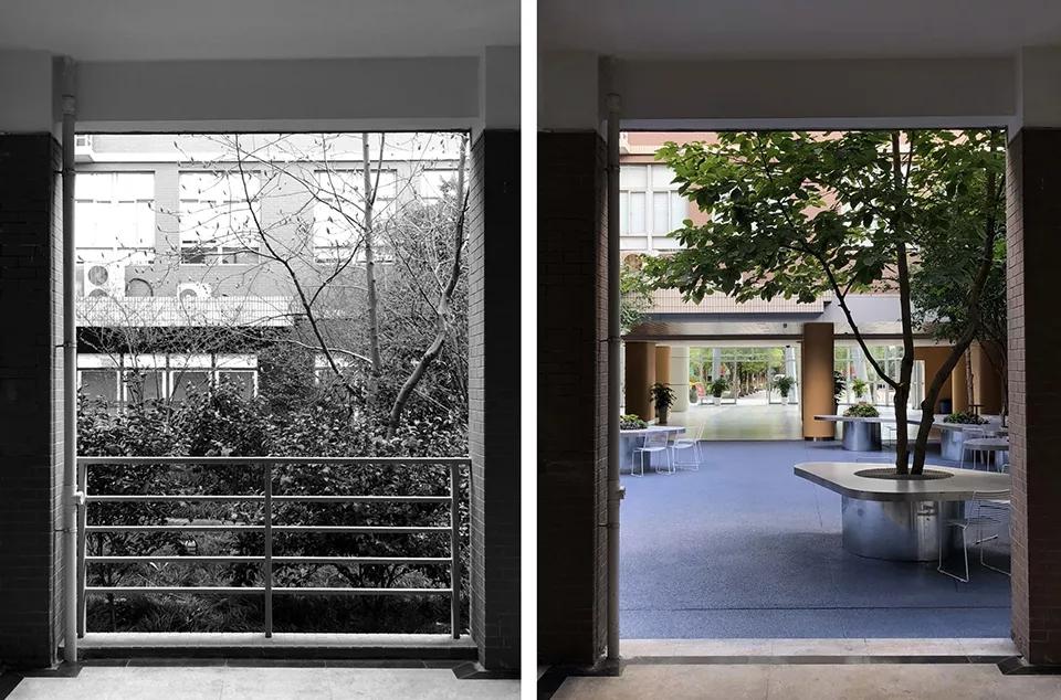 最受欢迎的非正式学习空间 - 树桌花园10.webp.jpg