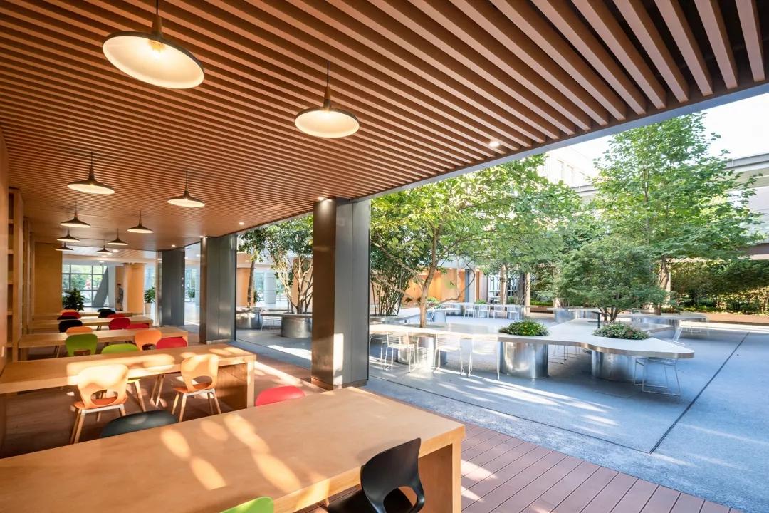 最受欢迎的非正式学习空间 - 树桌花园83.webp.jpg